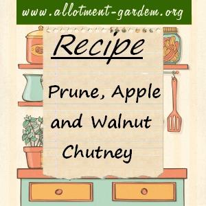 Prune, Apple and Walnut Chutney Recipe