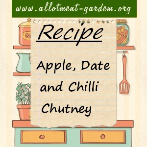 Apple, Date and Chilli Chutney Recipe