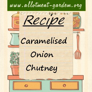 caramelised onion