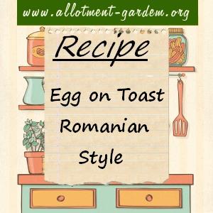 Egg on Toast Romanian Style