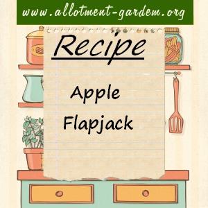 apple flapjack
