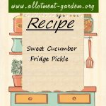 Sweet Cucumber Fridge Pickle Recipe
