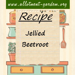 jellied beetroot