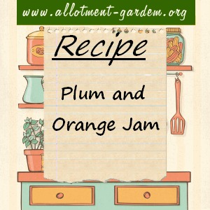 plum and orange jam