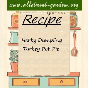 herby dumpling