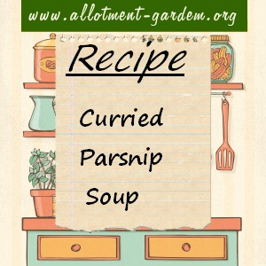 curried parsnip