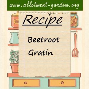 beetroot gratin