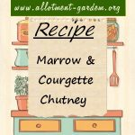 Marrow & Courgette Chutney Recipe