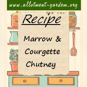 marrow and courgette chutney