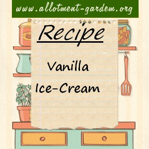 vanilla ice-cream