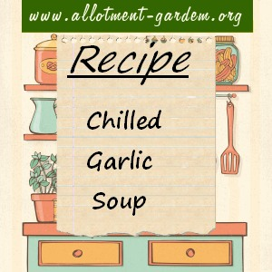 chilled garlic soup