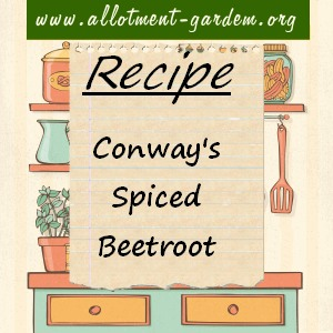 conway's spiced beetroot