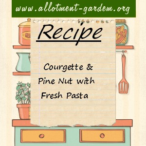 courgette pine nut pasta