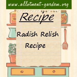 Radish Relishi