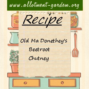 old ma donothey's beetroot chutney
