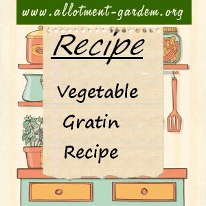 vegetable gratini