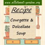 Courgette and Docellate Soup