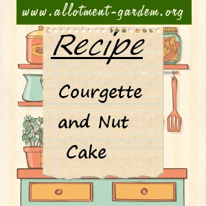 courgette nut cake