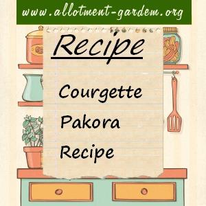 courgette pakora recipe