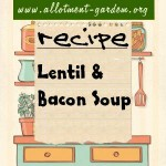 lentil & bacon soup recipe