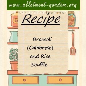 broccoli souffle