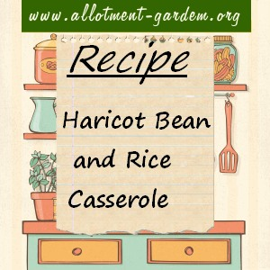haricot bean and rice