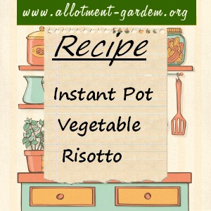 instant pot vegetable risotto