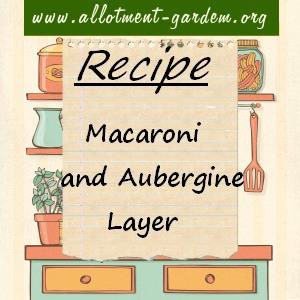 macaroni and aubergine