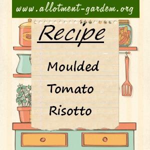 moulded tomato risotto