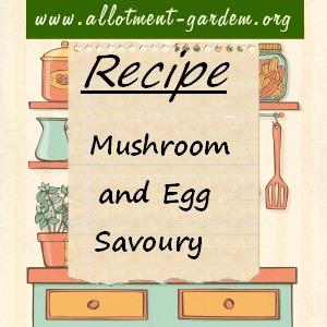 mushroom and egg savoury