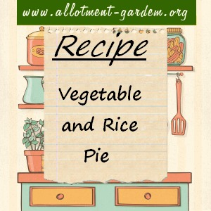 vegetable and rice pie