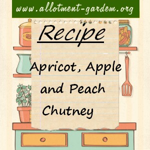 apricot, apple and peach chutney