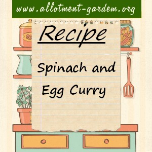 spinach and egg curry