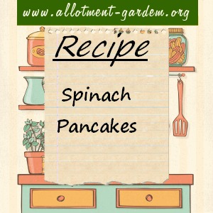 spinach pancakes 2
