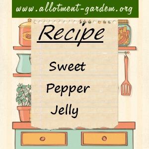 sweet pepper jelly