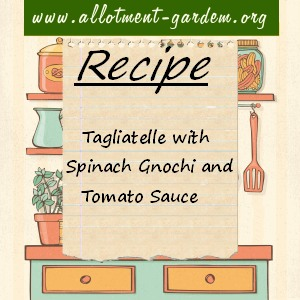 tagliatelle with spinach gnochi