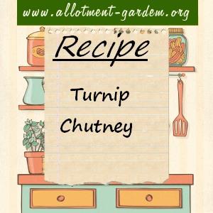 turnip chutney
