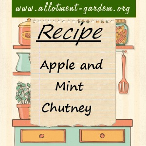 apple and mint chutney