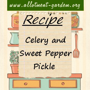 celery and sweet pepper pickle