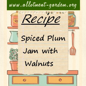spiced plum jam with walnuts
