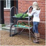 2 Tier Growbag & Trough Frame