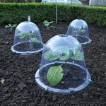 Bell, Solar, Blanching and Pop Up Cloches