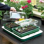 Fixed Temperature Propagators