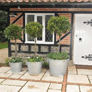 Galvanised Zinc Planters From Patio Growing Allotment Shop