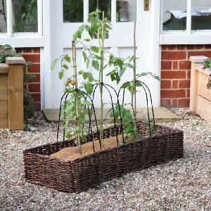 Grow Bag Cane Frames and Willow Surround