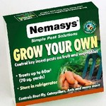 Grow Your Own Pest Control