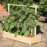 Growbag Trough and Frame Short