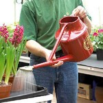 Haws Deluxe Outdoor 7ltrs Watering Can