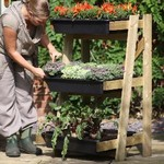 Ladder Vegetable Garden with PVC Cover