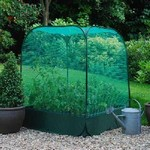 Large Raised Bed with Pop Up Net Cover